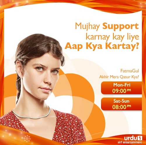 If you had to Support FatmaGul for Justice, what would you do?