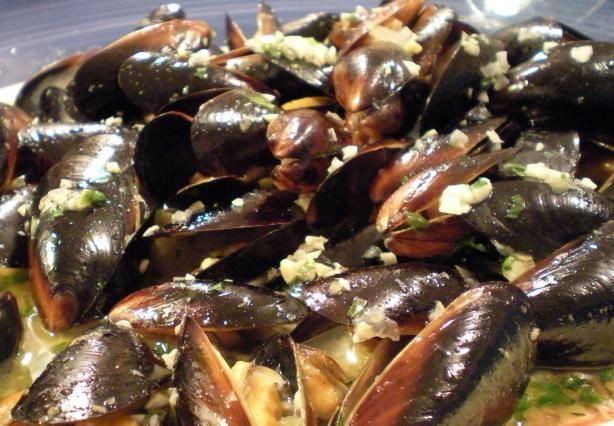Mussels in White Wine Sauce   Recipe
