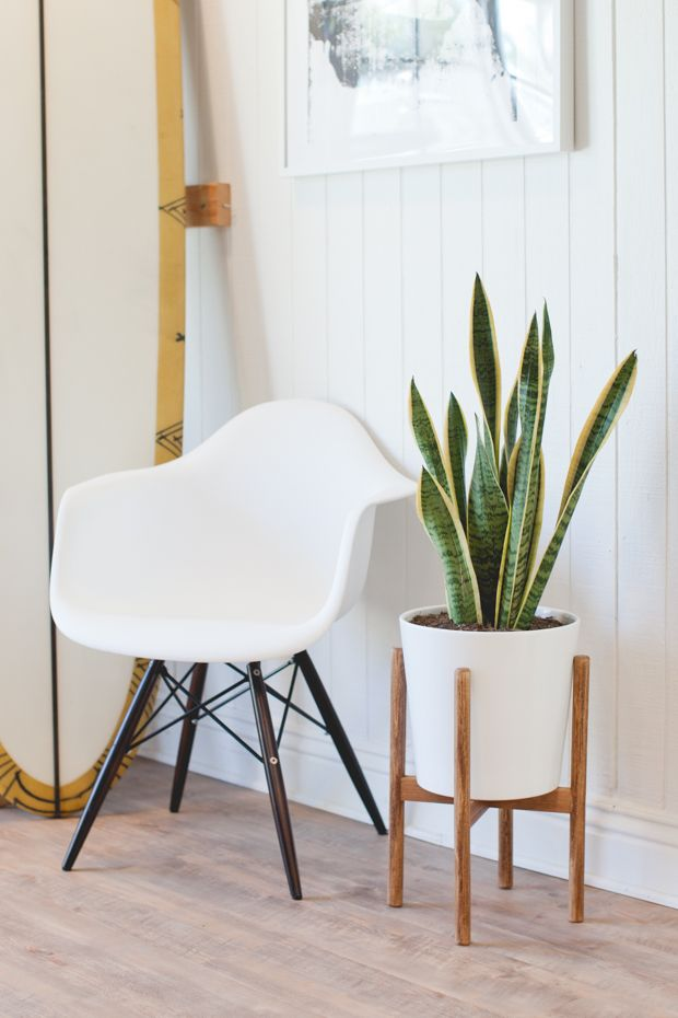 If you're looking for a stylish yet minimalist plant stand, this do-it-yourself Mid-Century inspired planter is a simple solution for your indoor plant storage needs