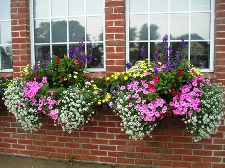 Guest contributors lawngarden rehab motherjapanese garden for Garden design windows 7