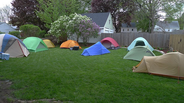 Camping In Your Backyard With Friends : Camp out in backyard with friends