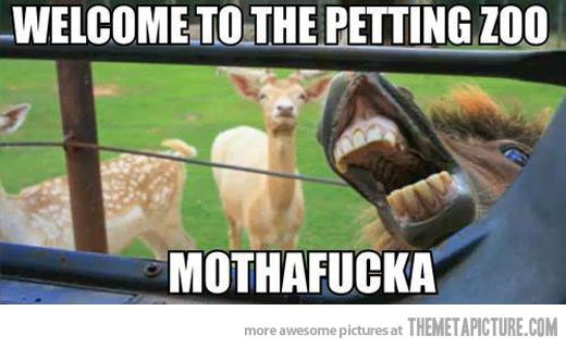 Petting zoo - laughed out loud.