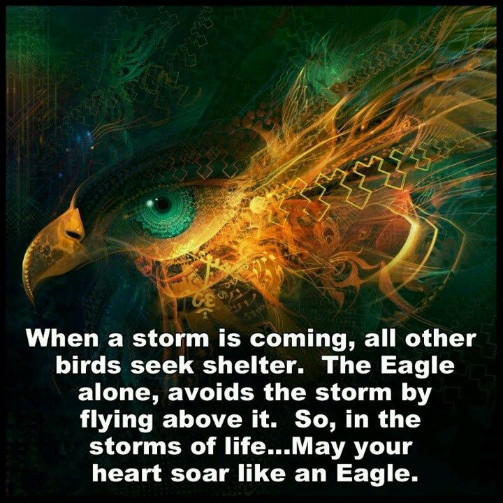 When a storm is coming.....#WiseWords Wednesday #NativeAmerican Quote
