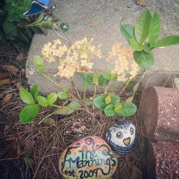 Painted rocks for the garden outside garden pinterest - Painting rocks for garden ...