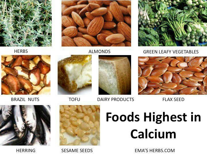 Foods highest in calcium herbal remedies and info pinterest