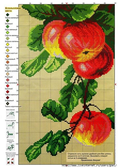 Вышивка схема яблок 60