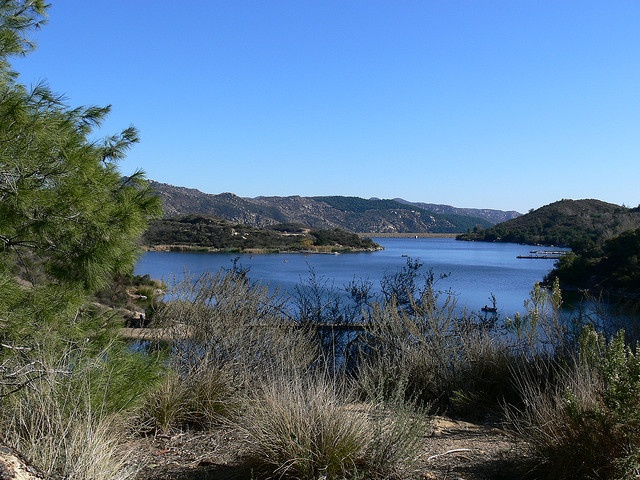 Pin by dorrine mendoza on north san diego county inland for Lake dixon fishing