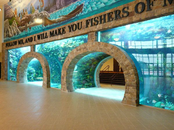 Tanked animal planet tv show scene tanked pinterest for Fish tank show