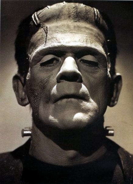 love and friendship of frankenstein Chapter 24 (part three)  frankenstein, who was dozing, awoke and asked the cause of the tumult  it was the love of virtue,.