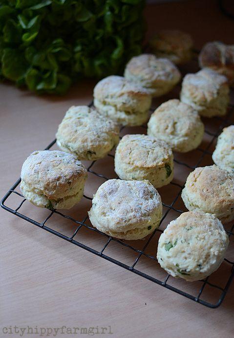 super easy sour cream and chive scones- cityhippyfarmgirl