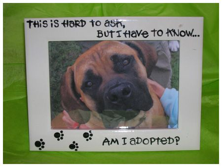 """Dog photo frame: """"Am I adopted?"""" (Here's another one that looks a little different: http://gifts.personalcreations.com/gifts/am-i-adopted-pet-frame-30021169)"""