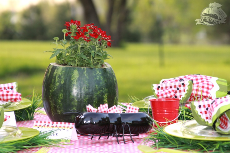 Picnic Table Setting & Summer Picnic Table Decorations Photograph | Picnic Table Se