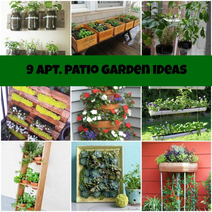 apartment patio garden ideas for the home pinterest