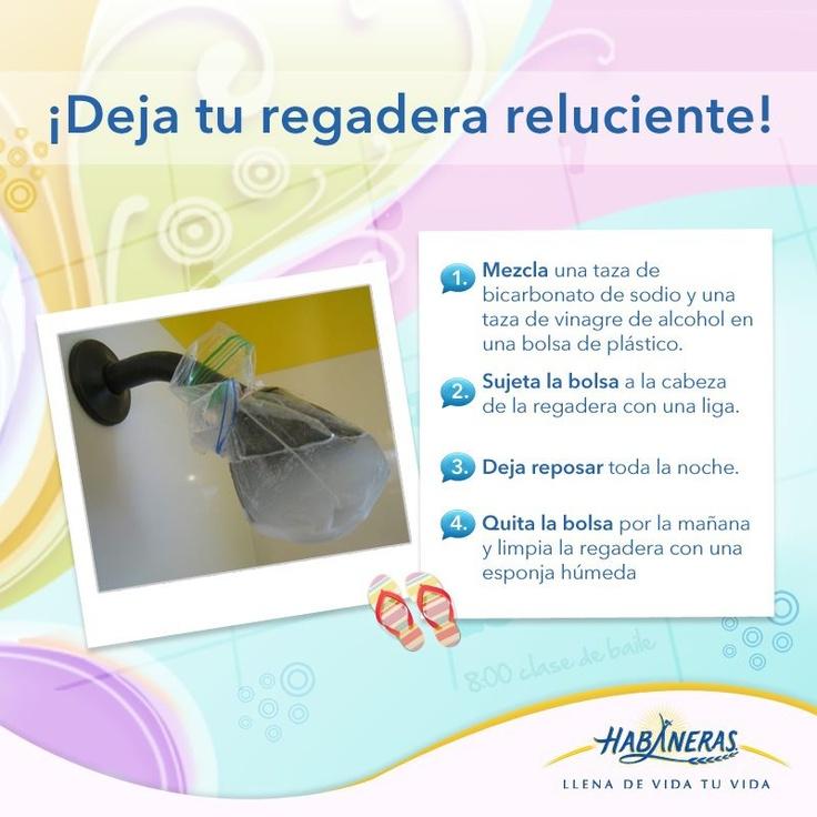 Limpiar Regadera De Baño: para limpiar tu regadera? Déjala reluciente siguiendo este tip