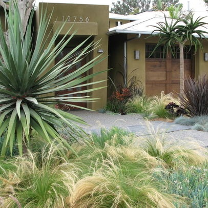 Landscaping landscaping ideas for front 25 yard zero target for Zero landscape ideas
