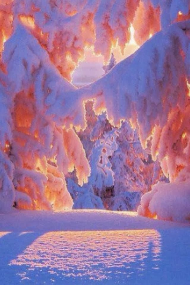 Winter sunrise! | Winter Wonderland | Pinterest