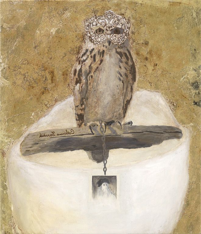 Pin by Amber Palmer on YOLO-you obviously love owls   Pinterest
