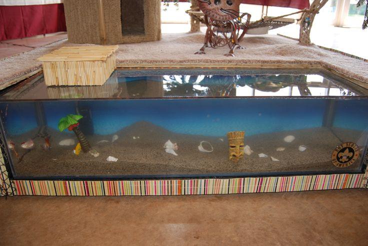 The enclosed fish tank beach scene. Barkitecture Pinterest