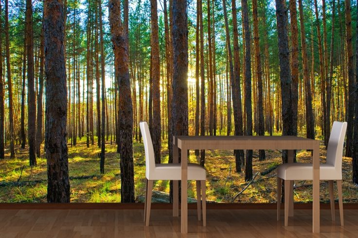 lined trees forest mural wallpaper at home between