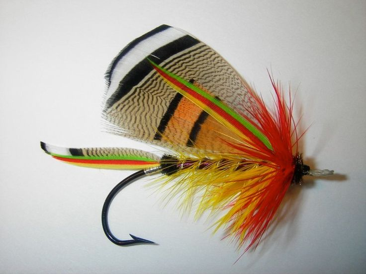 Bass fly fishing stuff pinterest for Fly fishing flies for bass
