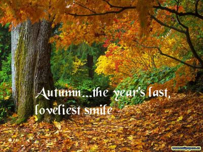 Perfect Inspirational Quotes About Fall. QuotesGram