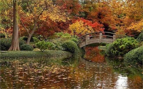Japanese Gardens Fort Worth Tx Beautiful Texas Pinterest