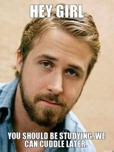 Ryan Gosling Yeah - HEY GIRL, YOU SHOULD BE STUDYING. WE CAN CUDDLE LATER.