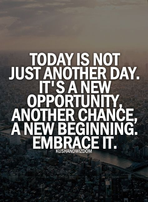 embrace the day favorite quotes pinterest