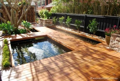 Koi pond in deck la maison du baebae pinterest for Koi aquaponics