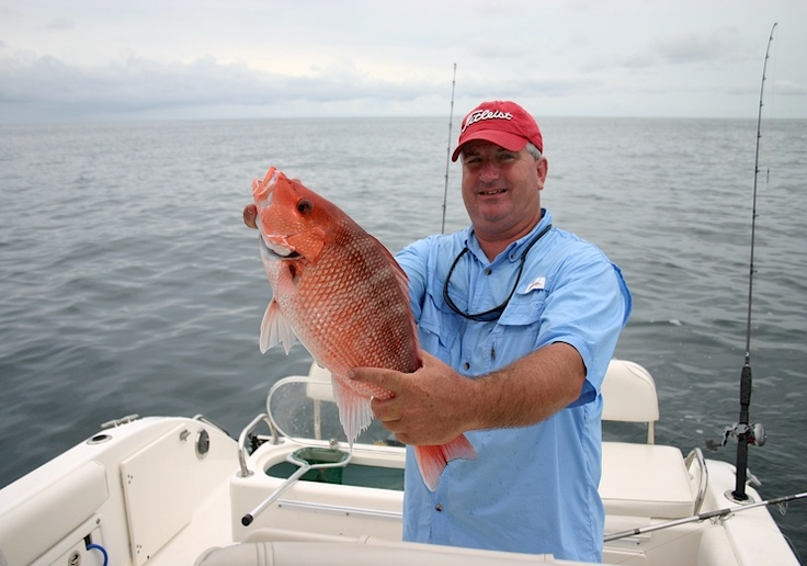 Fishing st simons island will provide you with big sharks for St simons island fishing