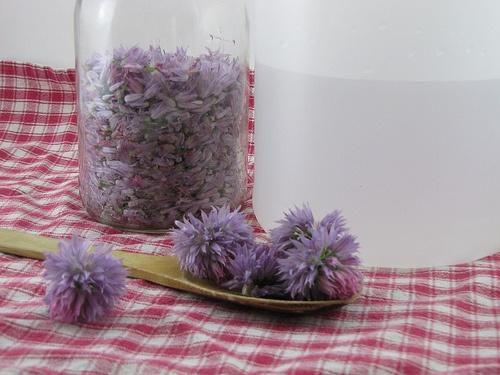 chive blossom vinegar 1 | Food Glorious Food | Pinterest
