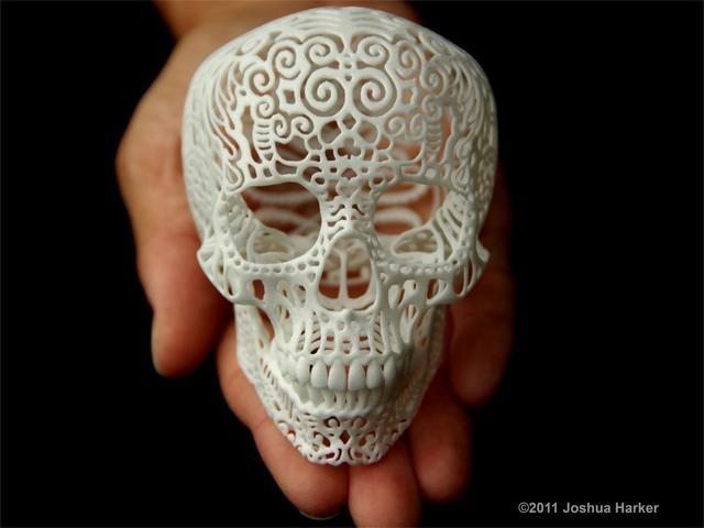Crania Anatomica Filigre (small) by Joshua Harker on Shapeways, the 3D printing marketplace