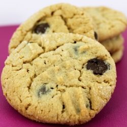 Peanut Butter Crisscross Cookies with Chocolate Chips for Tuesdays with Dorie