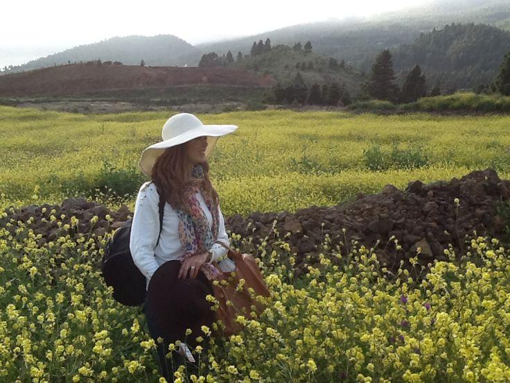 sara flowers el paso tx