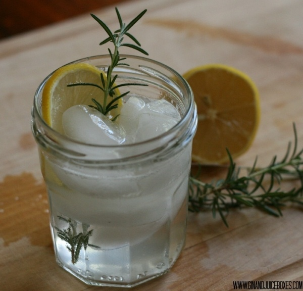 Rosemary Gin Fizz from Gin and Juiceboxes