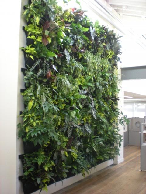 Vertical Garden Living Wall Product Placement Pinterest