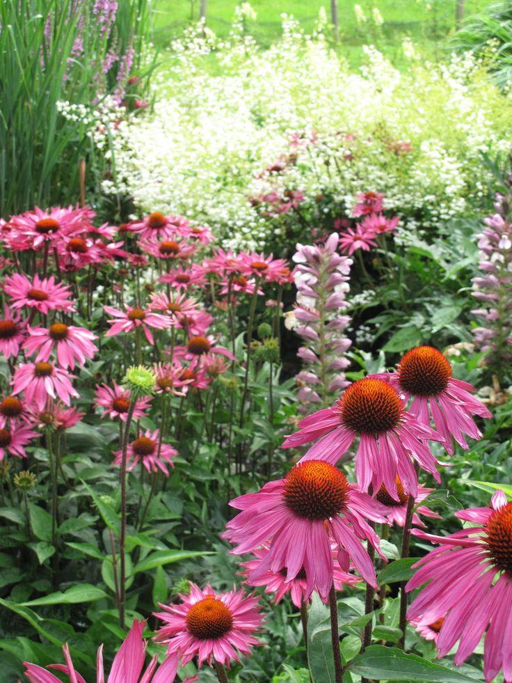 Perennial flower garden design 2017 2018 best cars reviews for Perennial flower garden designs