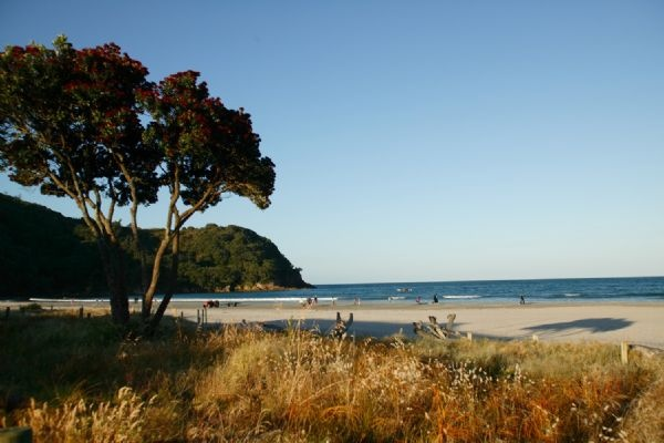Waihi New Zealand  City new picture : ... place, camping ground when we were lil tots. Waihi Beach, New Zealand
