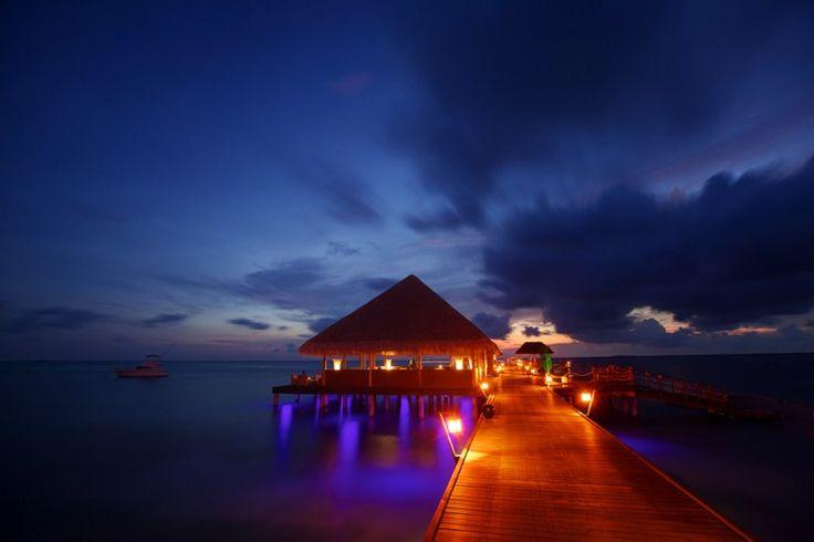 This is it: Kuramathi Island Resort in the Maldives.