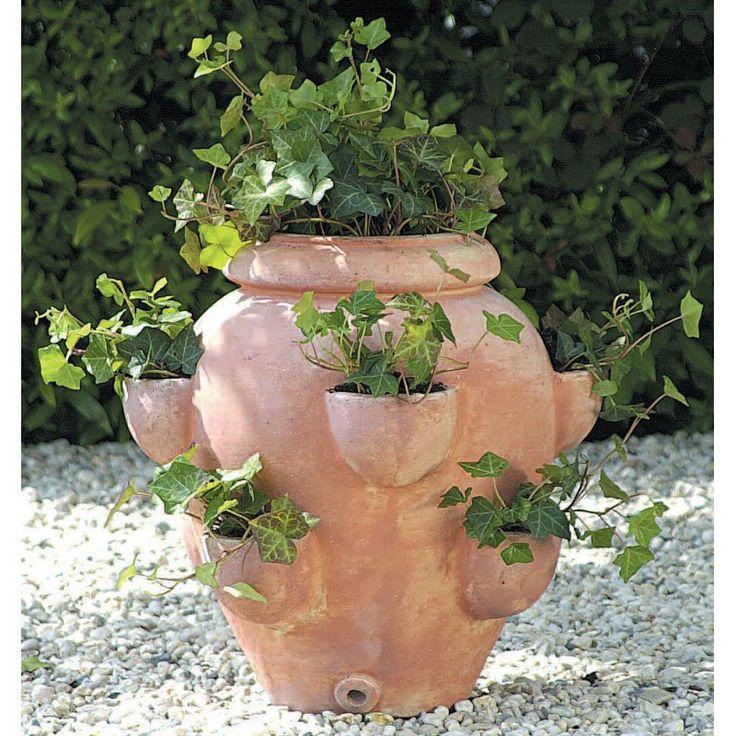 Terracotta Strawberry Jar Planters Garden Ideas Pinterest