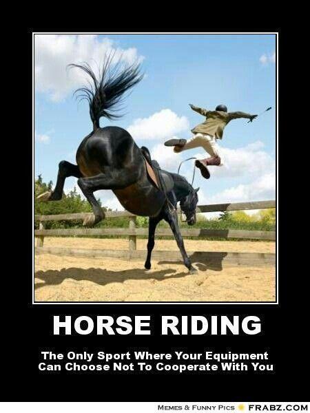 Funny Horseback Riding Quotes. QuotesGram