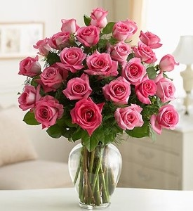 valentine day pink roses