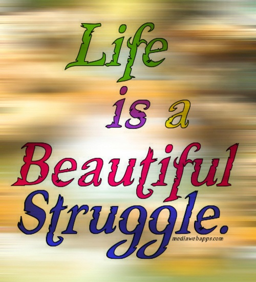 Life is a beautiful struggle essay
