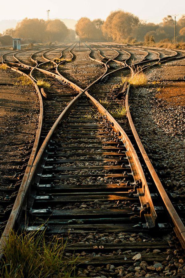 A vida nos mostra vários caminhos.  Aqueles que escolhem um caminho, no final dizem que o seu destino era aquele.  Aqueles que se deixam levar pela vida muitas vezes se arrependem de não ter arriscado.  Aqueles que arriscam nem sempre acertam, mas é melhor se arrepender daquilo que fez do que daquilo que não fez.
