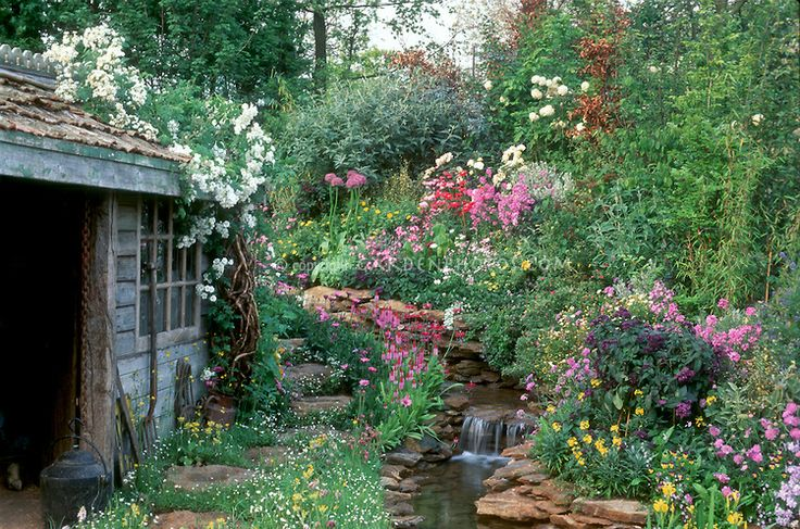 garden, gorgeous flowers, naturalistic, garden tools, attract wildlife