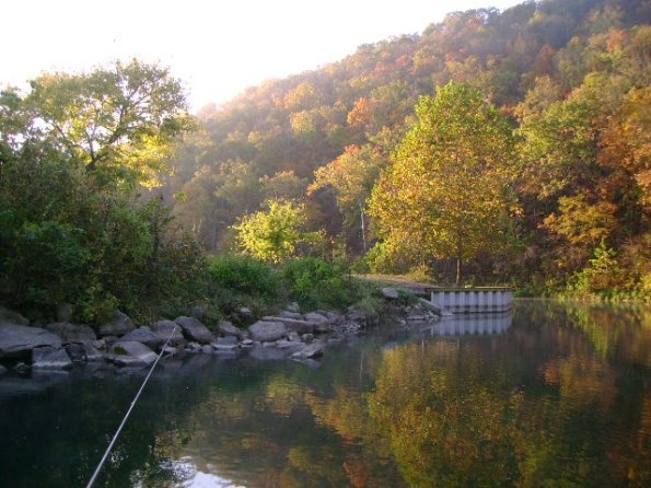 Roaring river state park been there pinterest for Roaring river fishing