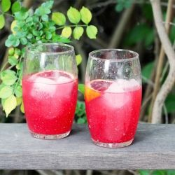Blood Orange Gin Sparkler | BYOB | Pinterest