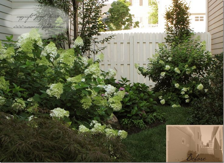 Landscaping A Narrow Side Yard Patio And Garden Pinterest