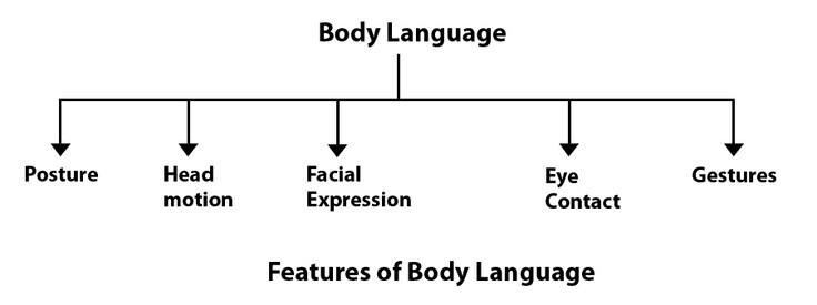 Body Language Research Paper