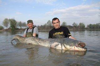 Belton lake belton texas pinterest for Belton lake fishing